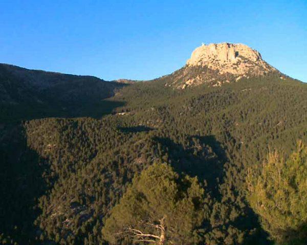 Sierra Espuña captura carbono