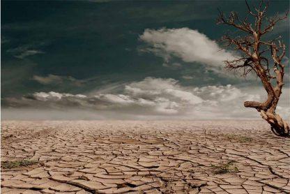 Sequia y cambio climatico